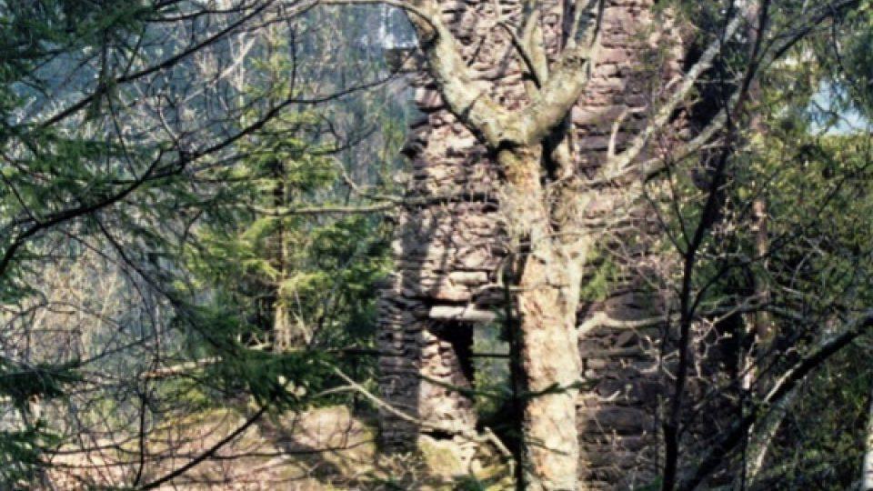 Na zapomenutou zříceninu lesního hrádku Aichelburg upozornil stavebně-historický průzkum provedený v roce 1992