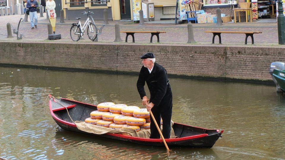 Doprava sýrů na trh