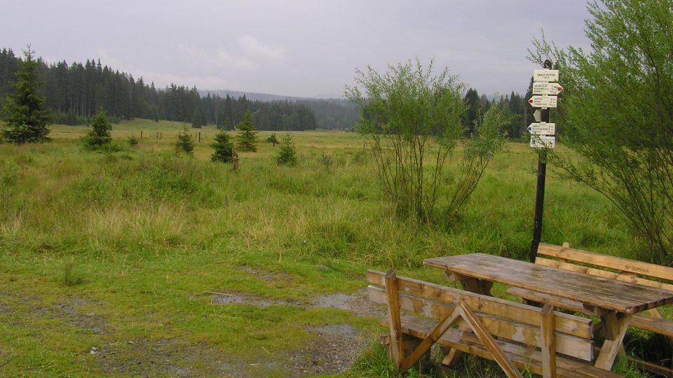 V okolí Modravy se nacházejí nejrozsáhlejší slatě na Šumavě