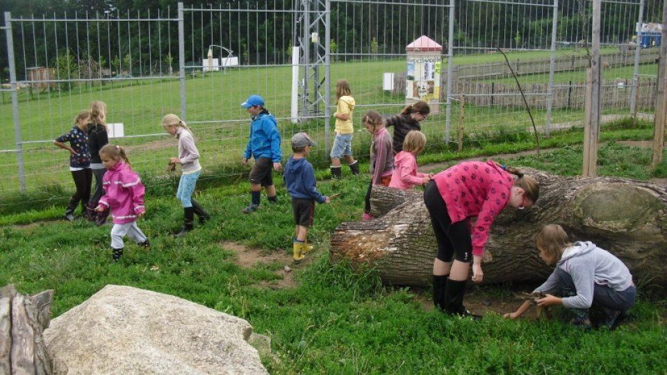 Zoologická zahrada Tábor-Větrovy pořádá několikadenní příměstský tábor pro děti, které se chtějí dozvědět víc o životě divokých zvířat a zároveň zjistit, co obnáší péče o ně