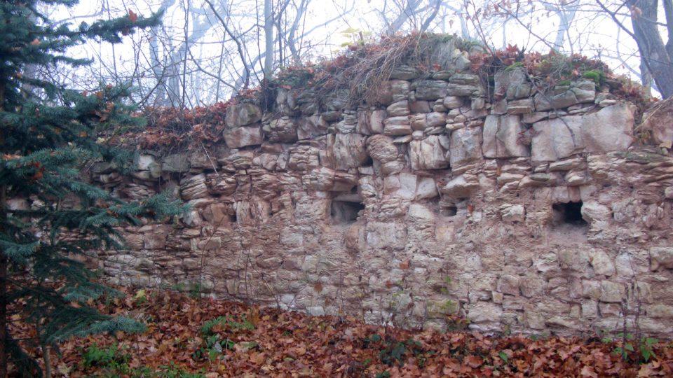 Výběr z fotografií zříceniny hradu Pravda v roce 2009