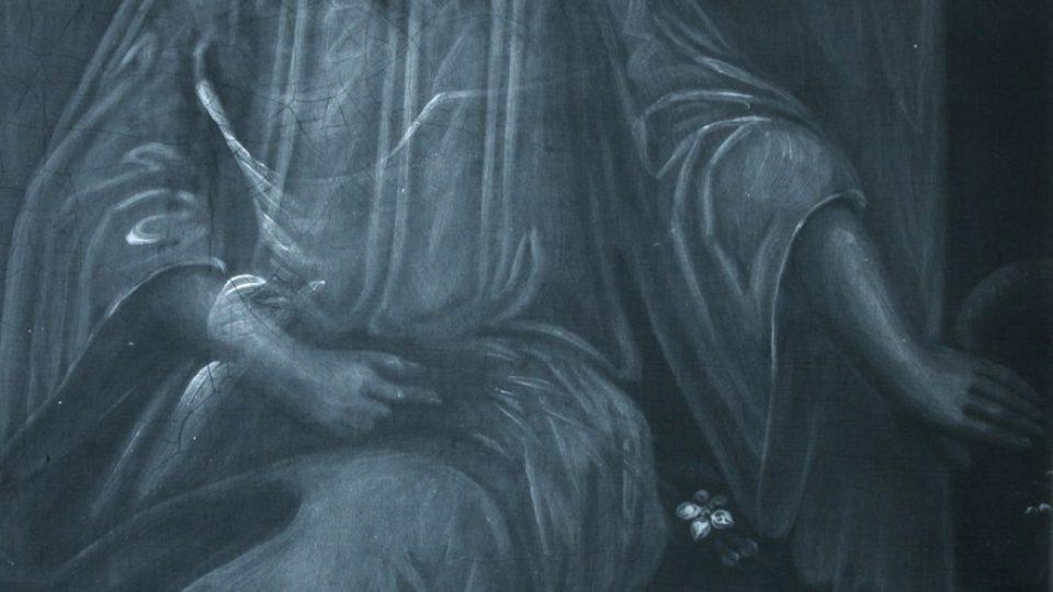 Podobizna mladého muže, 19.st., v rentgenovém záření (Moravská galeriev Brně ve spolupráci s laboratoří MOLAB, a VUT Brno, převzato z Hradil a kol., Technologia Artis 2006, 20-28)