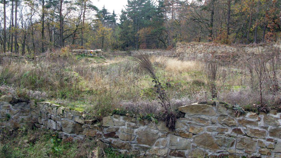 Sion v roce 2008