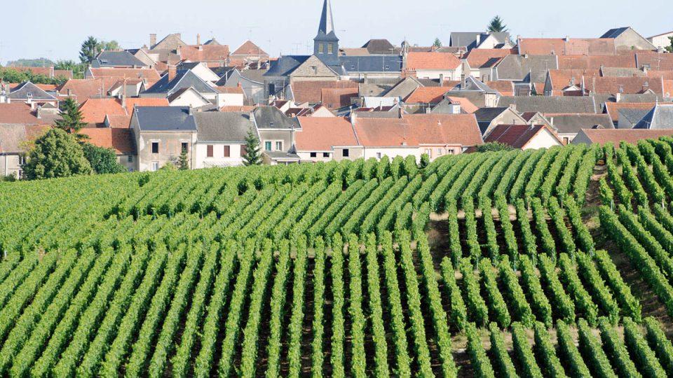 Víno s bublinkami se ve světě stalo pojmem