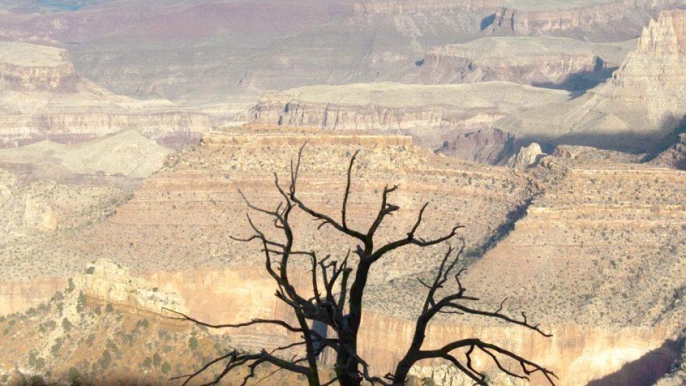 Lidé tady žili přinejmenším 12 tisíc let. Některé národy považovaly kaňon za domov a místo k životu, pro jiné měl hlavně duchovní význam