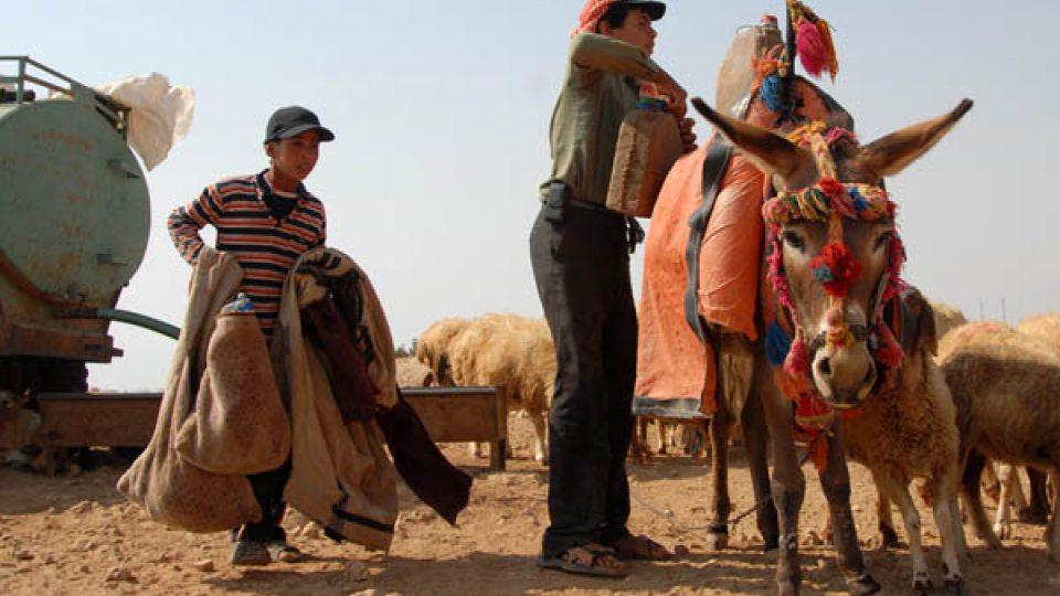 Většina beduínů musí pro vodu jezdit i několik kilometrů, ať už k prameni nebo k cisterně