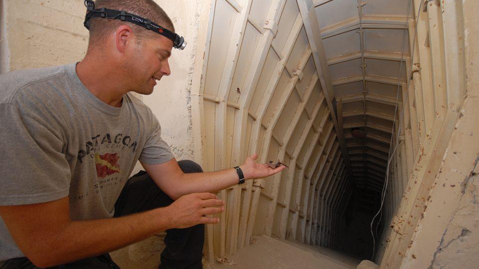 Eran Amichaj vypouští netopýra zpátky do podzemí
