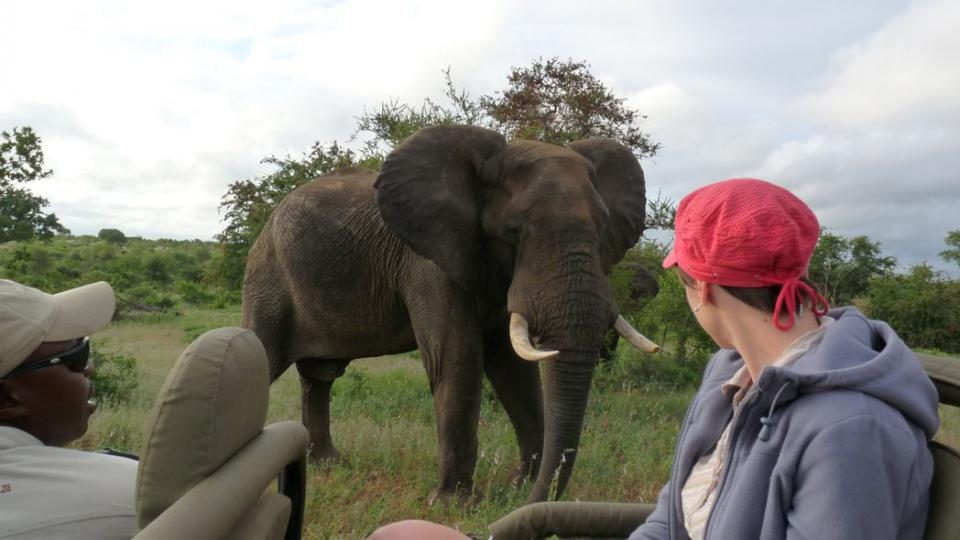 Klára Škodová pozorovala slony v Timbavati v Jihoafrické republice
