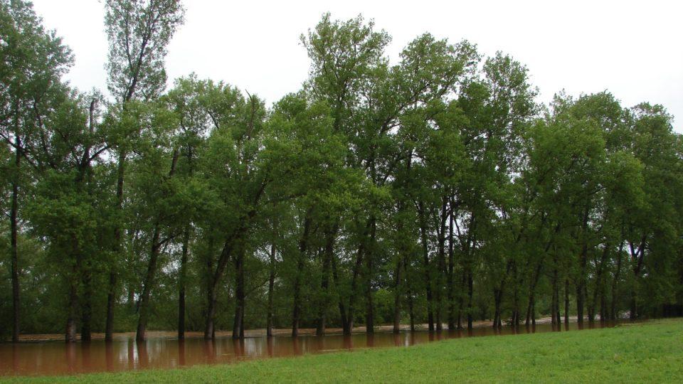 Záplavy v Němčicích 2