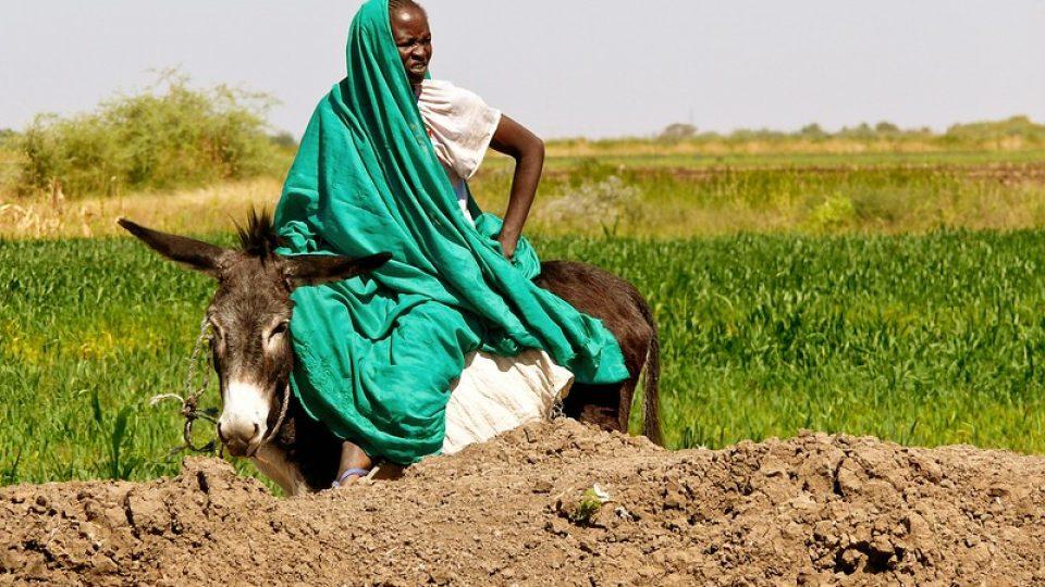 Andrea Kaucká a René Bauer - Súdán - Žena na svém poli