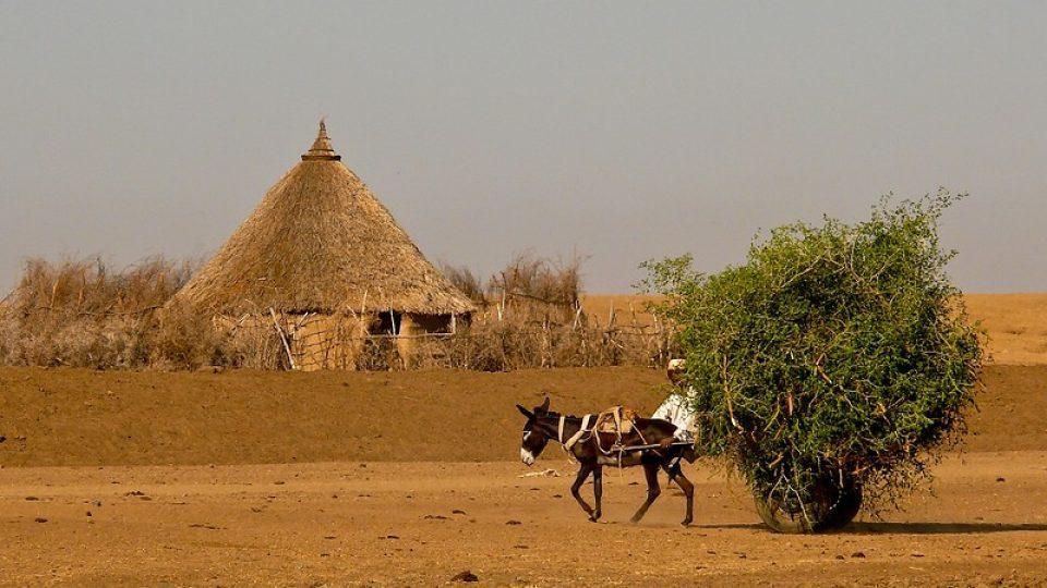 Andrea Kaucká a René Bauer - Súdán - Život na venkově
