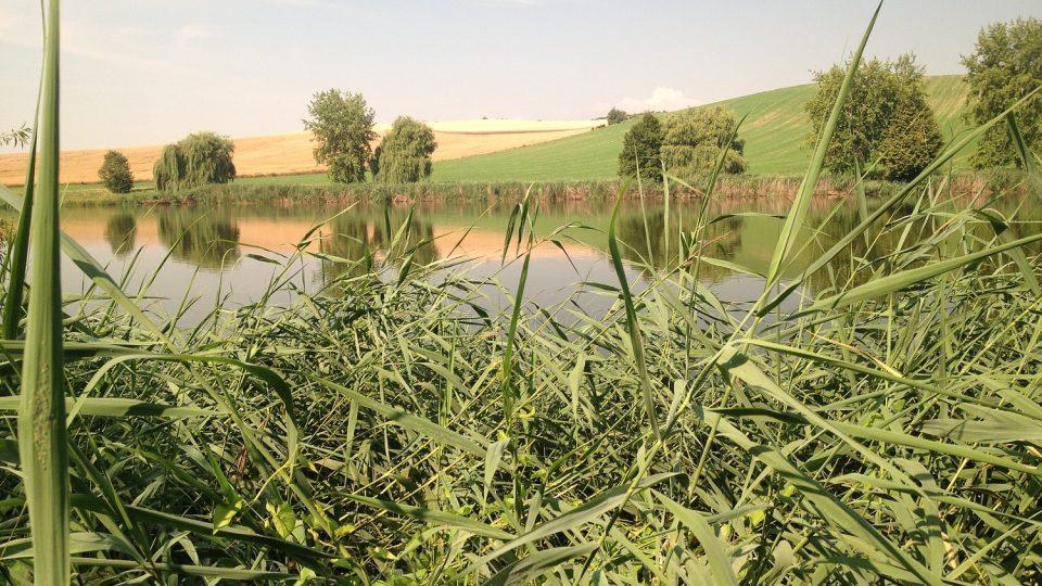 Rybník za areálem
