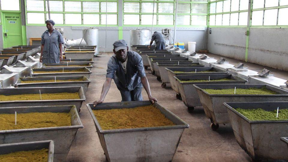Zaměstnanci továrny při práci