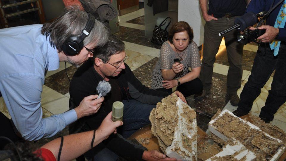 Noční komentovaná prohlídka výstavy Meteoru