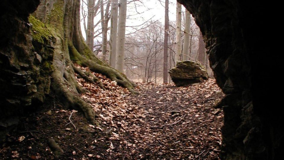 Jeskyně Průchodnice