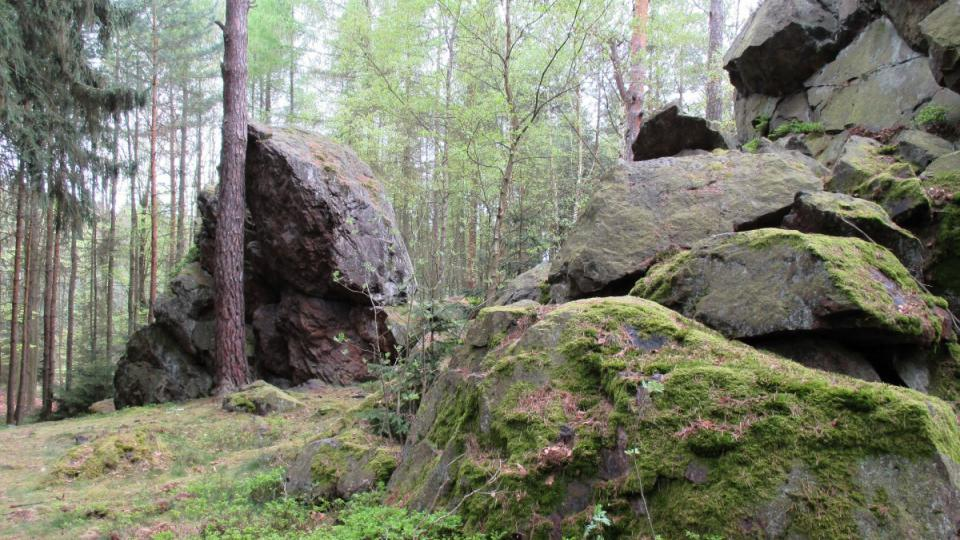 Přírodní památka Andrejšky