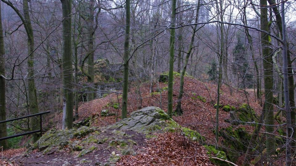 Hradní příkop hradu Branky