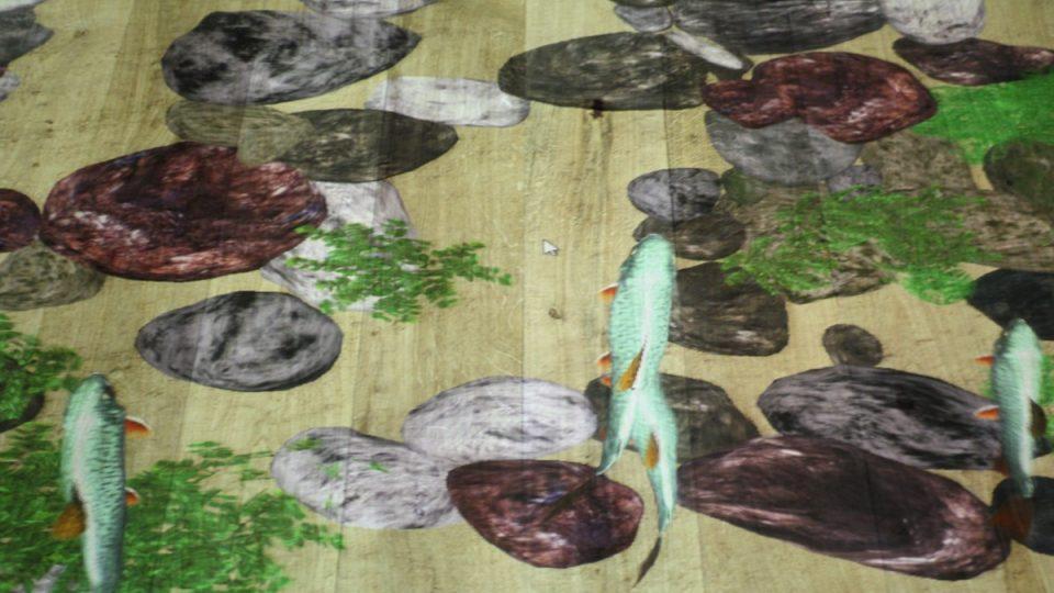 Interaktivní podlaha - pstruzi v horské bystřině