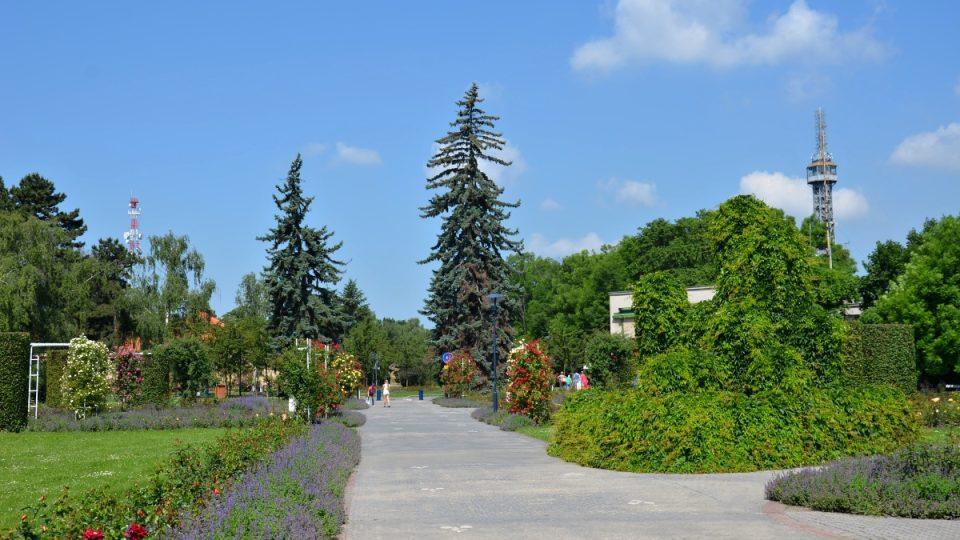 Zahrada Květnice je součástí Růžového sadu na Petříně