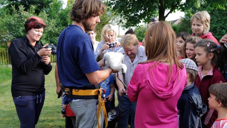 Záchrana čapích mláďat v Čestlicích
