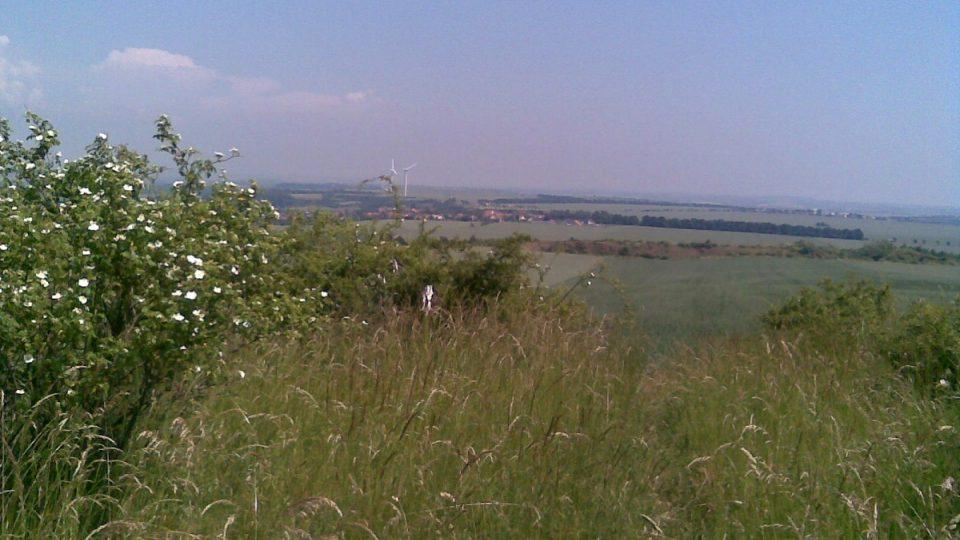 Pohled z Vinařické hory