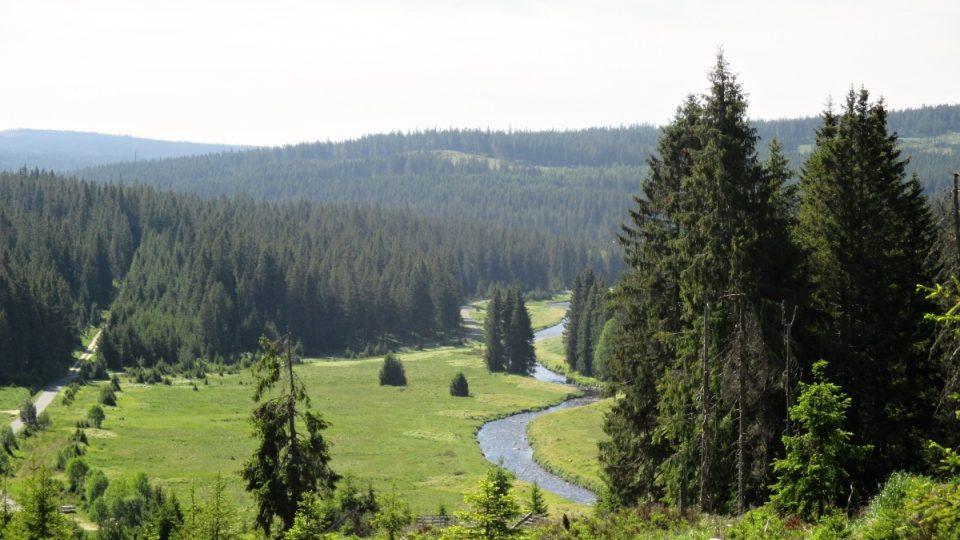 Pohled od Březníku na Luzenský potok