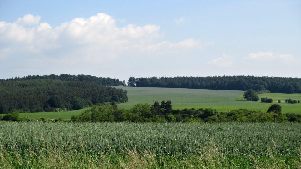 Nenápadný kopec Kosina z dálky
