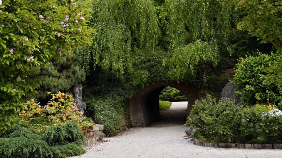 Tunel lásky v Jiráskových sadech v Hradci Králové