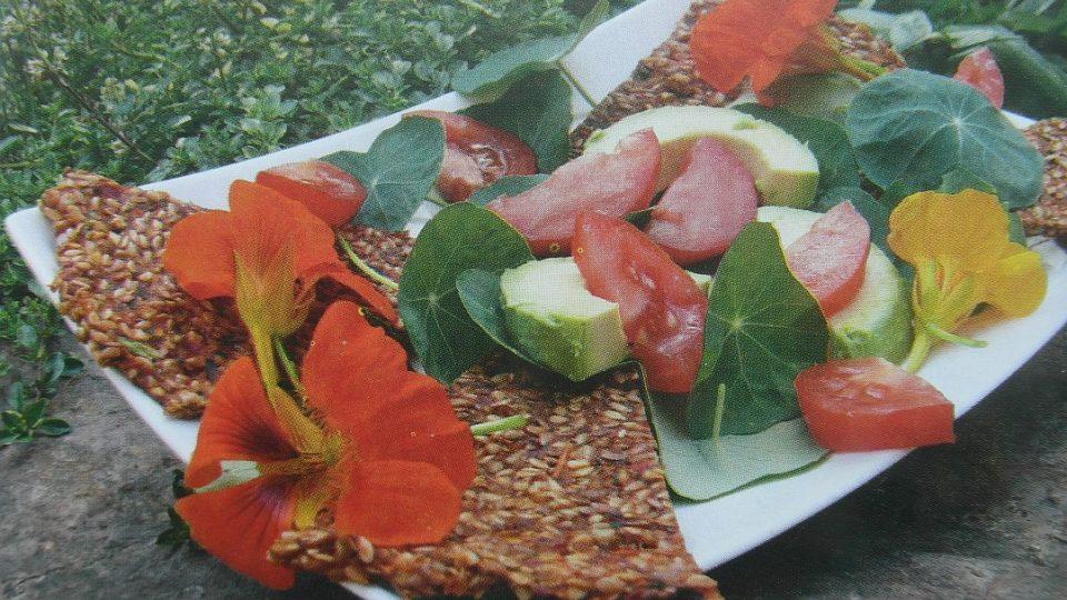 Živá strava - Rajčatové placky