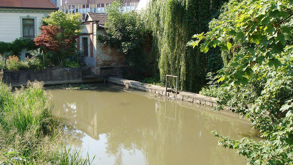 Kanál Halda poblíž Bělobranského náměstí v Pardubicích