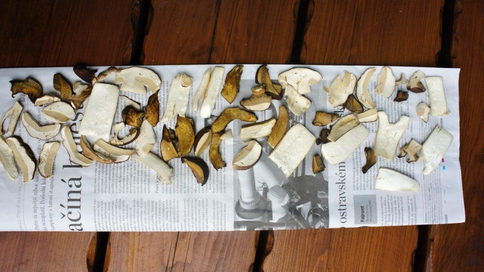 Sušíme houby
