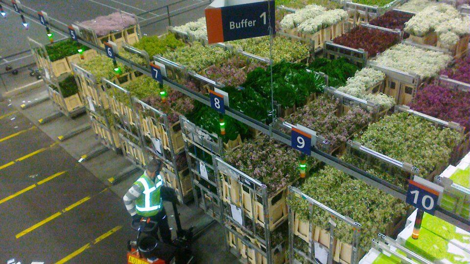 Květinová burza v nizozemském Aalsmeeru