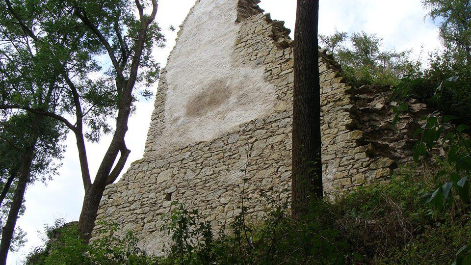 Zřícenina hradu Brandýs nad Orlicí