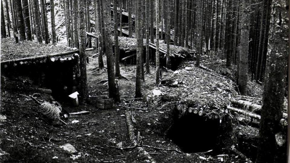 Střílny schované v lesích na haličské frontě