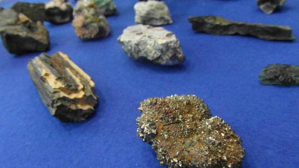 Jakub Mysliveček, sběratel minerálů, přinesl ukázky od vltavínů po trilobity