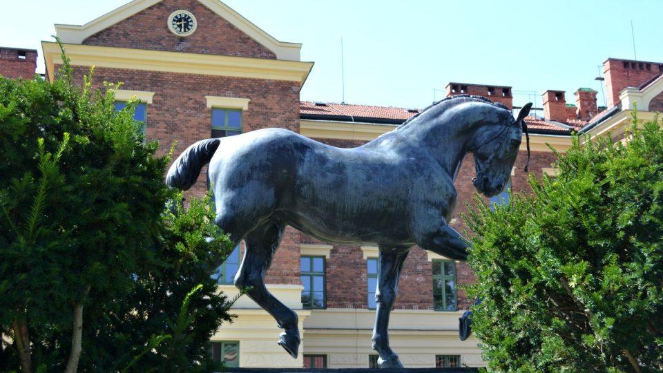 Jako by někde setřásl Václava a přiběhl od Národního muzea, písecký hřebec Ardo stál předlohou oběma sochám