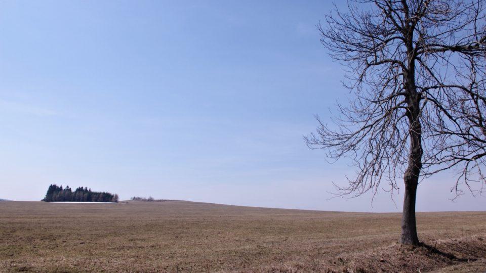 Barbařina louka nedaleko Dětřichova je místem popravy někdejší kořenářky