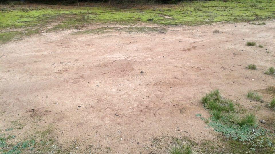 Bílý písek v oblasti kalojemů