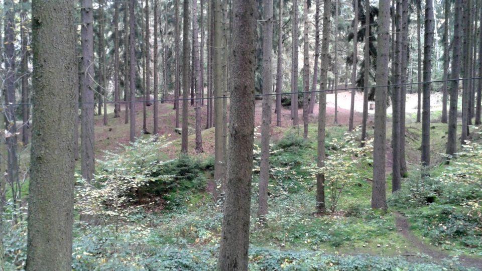 Návaly a haldy v lesích v blízkosti Roudného