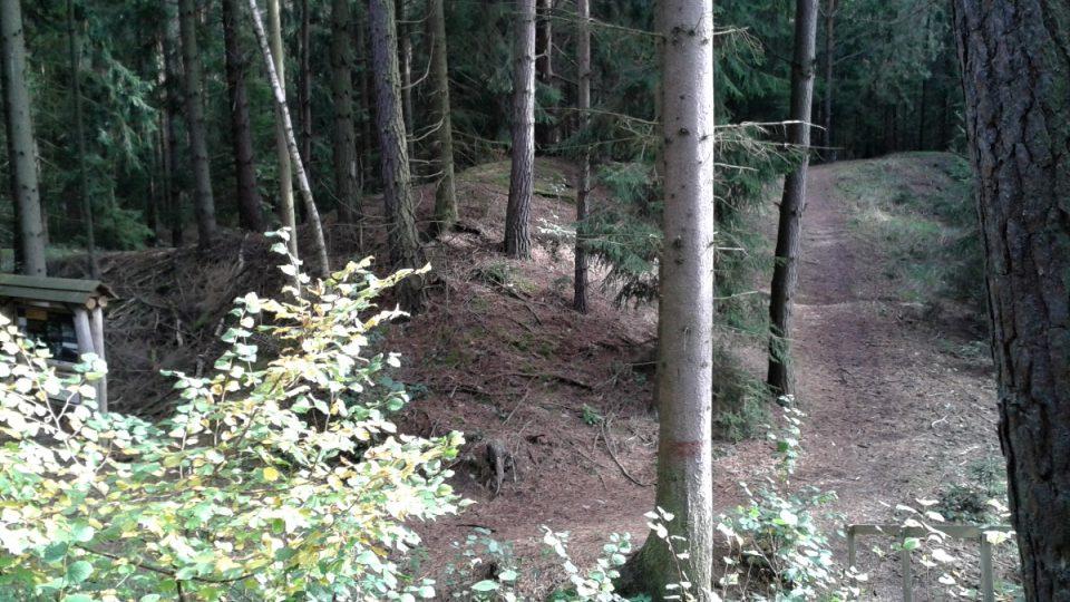 Návaly v lesích kolem roudnýho