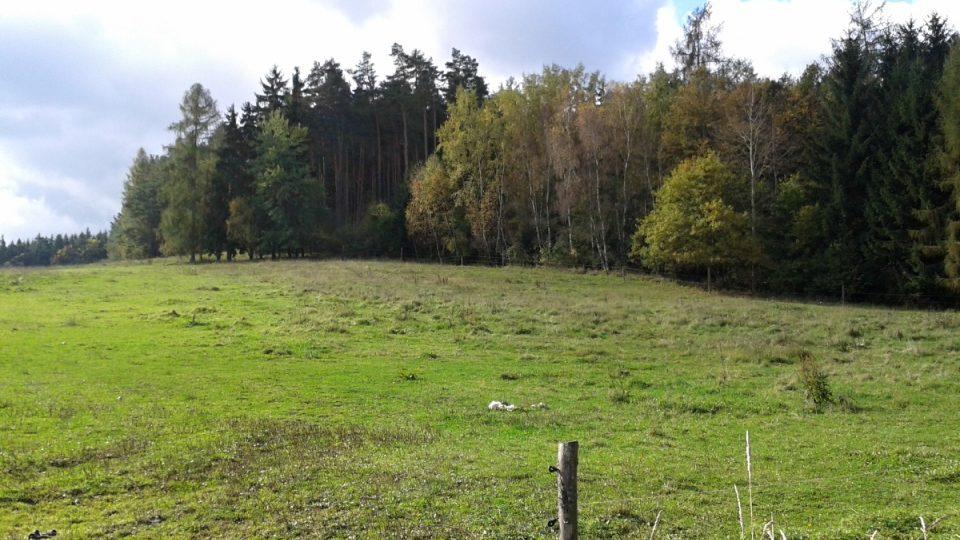 V okolí Roudného jsou některé kopce původní středověké haldy