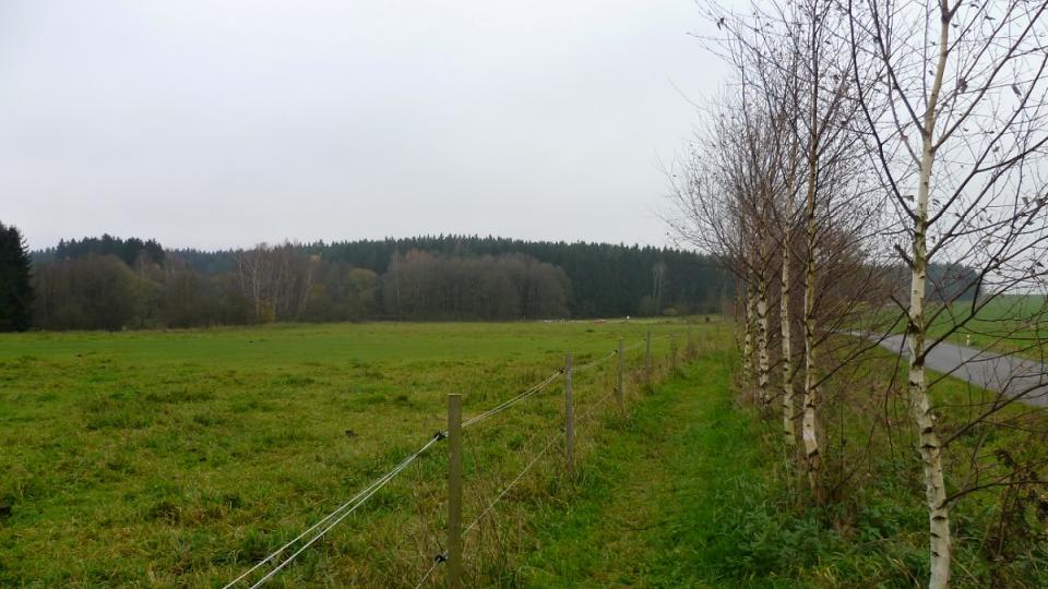 Stezka kolem pastvin