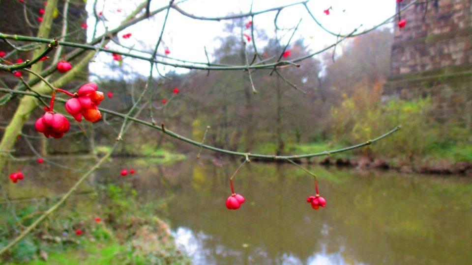 Podzim na Klabavě pod mostem