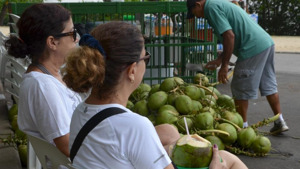 Zatímco zákaznice si pochutnávají, Luciano přebírá kokosové ořechy do klece. Mladší dolů, zralejší navrch
