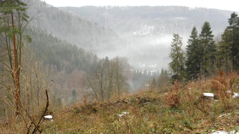 Nízké Jeseníky