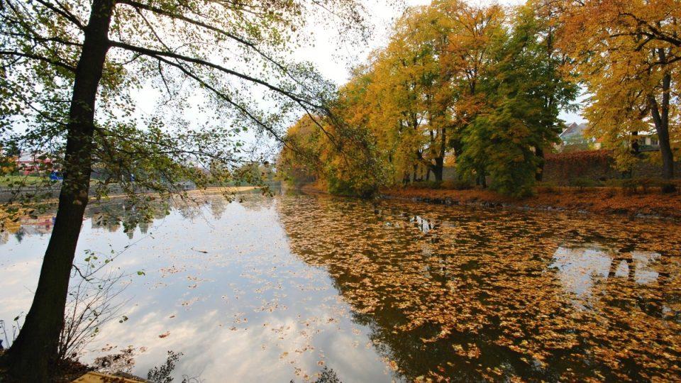Podzim na Synském rybníce