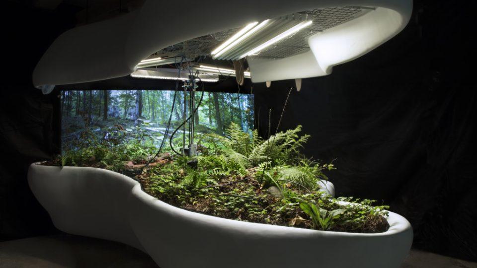 Laboratoř ticha pro EXPO 2015