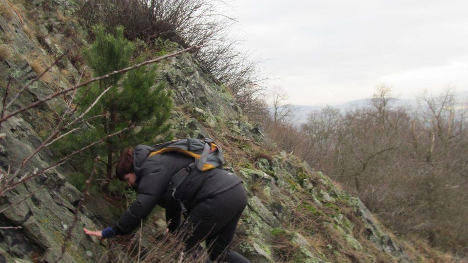 Drápání se na vrchol Trojhory
