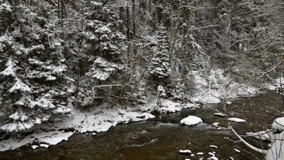 Řeka Úpa pod brusírnou