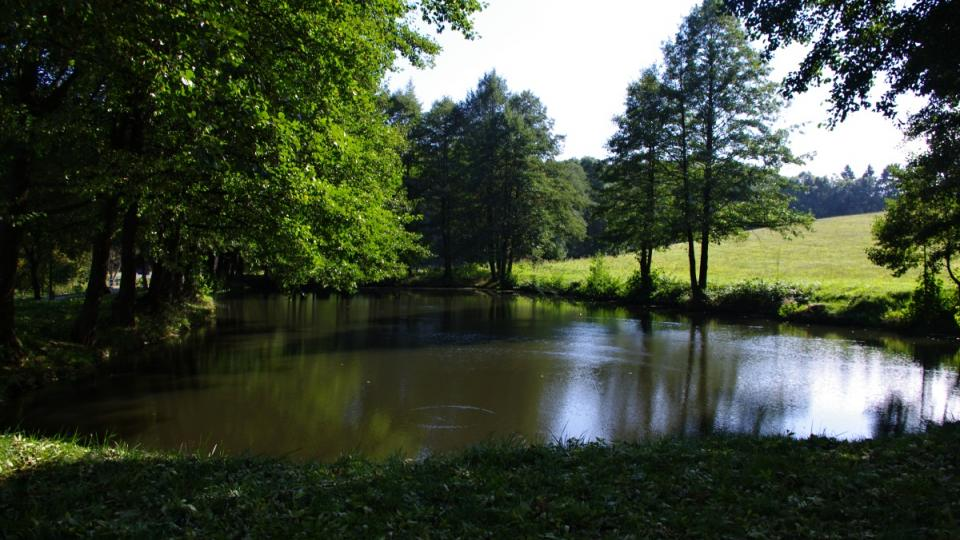 Rybníček nad mlýnem dávala dostatek vody pro mletí i v době sucha